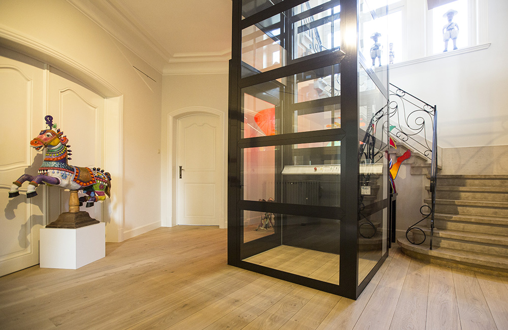 glass platform home lift